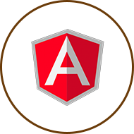 anjular icon